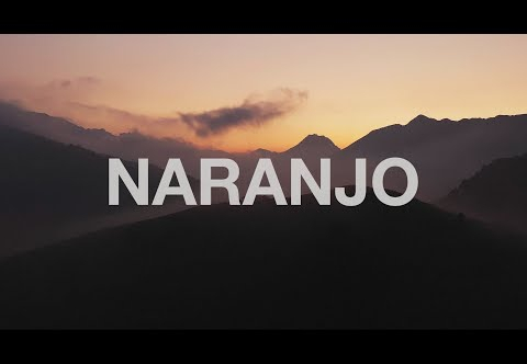 NARANJO | The North Face