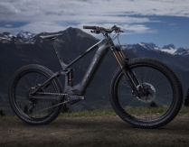 Trek - Powerfly LT 9.9 Plus